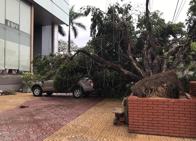 Nghệ An: Tan hoang sau bão, cây xanh bật gốc đè ô tô, người dân chặt cây tìm đường vào nhà - Ảnh 7.
