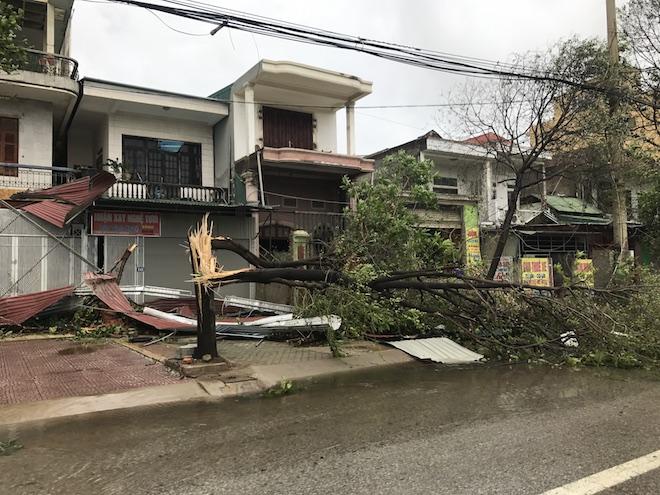 Nghệ An: Tan hoang sau bão, cây xanh bật gốc đè ô tô, người dân chặt cây tìm đường vào nhà - Ảnh 4.