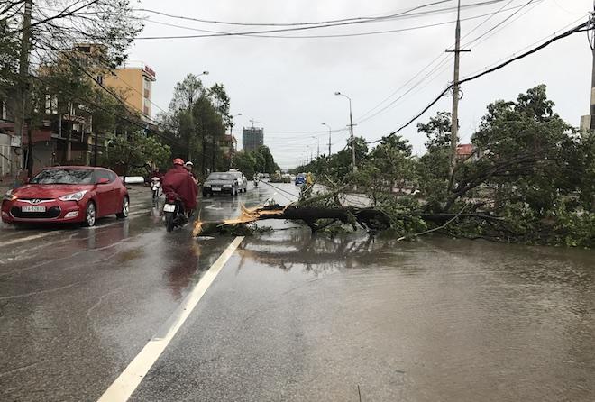 Nghệ An: Tan hoang sau bão, cây xanh bật gốc đè ô tô, người dân chặt cây tìm đường vào nhà - Ảnh 18.