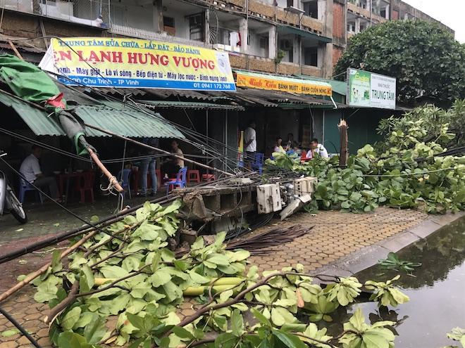 Nghệ An: Tan hoang sau bão, cây xanh bật gốc đè ô tô, người dân chặt cây tìm đường vào nhà - Ảnh 17.