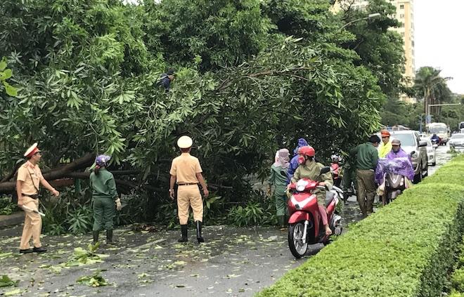 Nghệ An: Tan hoang sau bão, cây xanh bật gốc đè ô tô, người dân chặt cây tìm đường vào nhà - Ảnh 13.