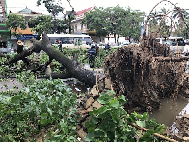 Nghệ An: Tan hoang sau bão, cây xanh bật gốc đè ô tô, người dân chặt cây tìm đường vào nhà - Ảnh 3.
