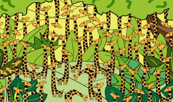 Thách đố của Playbuzz: Sau 3 giây, tìm ra số 8 lẫn trong ma trận số 9 - Ảnh 8.