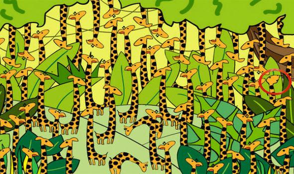 Thách đố của Playbuzz: Sau 3 giây, tìm ra số 8 lẫn trong ma trận số 9 - Ảnh 17.
