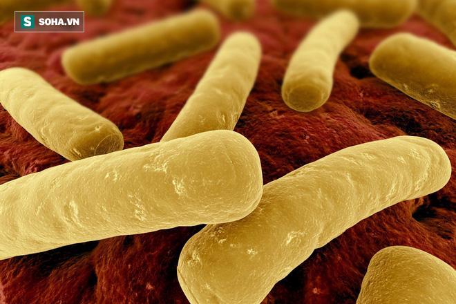 5 chất độc có sức hủy diệt khủng khiếp nhất thế giới - Ảnh 1.