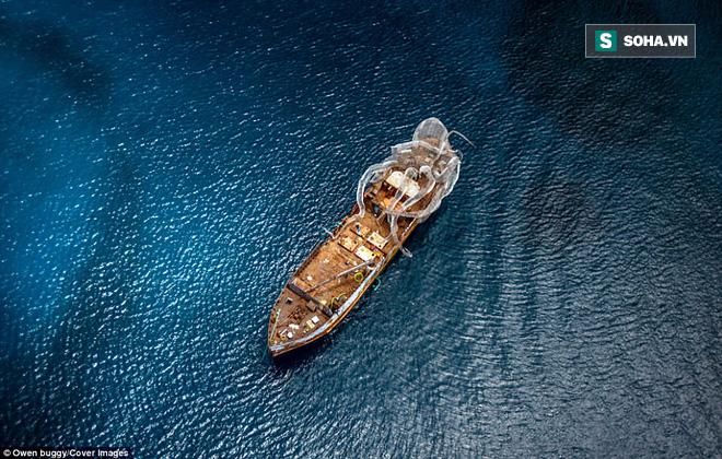 Dựng video con tàu nổi tiếng thời Thế chiến 2 bị thủy quái khổng lồ Kraken đánh đắm - Ảnh 1.