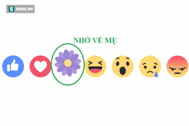 Facebook ra mắt biểu tượng thả hoa Biết ơn nhân Ngày của Mẹ 2017 - Ảnh 1.