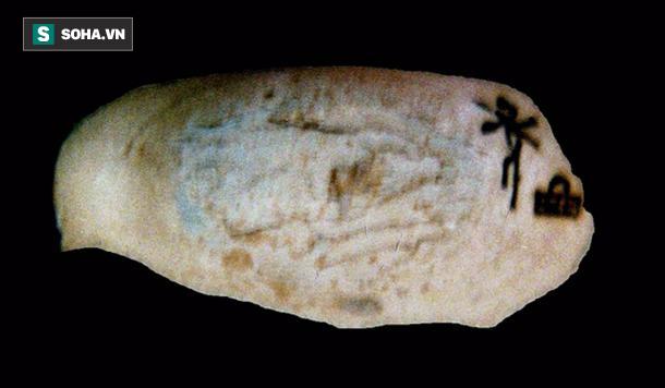 Không phải Hatshepsut, đây mới là nữ hoàng cầm cân nảy mực đầu tiên ở Ai Cập - Ảnh 2.