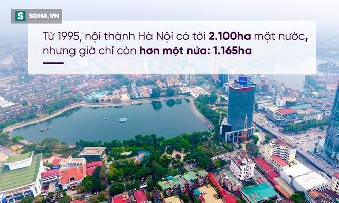 Viết từ Washington DC: Nước ngoài bỏ cả tỉ đô la làm hồ, người Việt bỏ tiền để biến hồ thành Thị Nở - Ảnh 3.