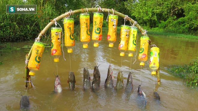 Bắt được cả rổ cá với chiếc bẫy làm từ chai nhựa: Chẳng phải cầm cần câu chờ đợi mệt mỏi - Ảnh 7.