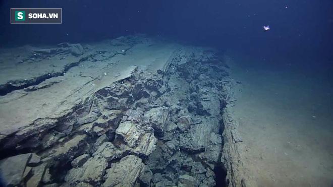 95% đại dương là ẩn số với nhân loại: Đây là những kỷ lục mà con người xác định được - Ảnh 2.