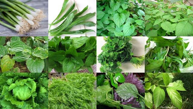 Tác dụng chữa bệnh ít biết của các loại rau thơm - Ảnh 1.