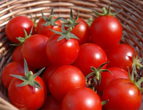 11 sai lầm khi chế biến rau làm tổn hại sức khỏe - Ảnh 1.