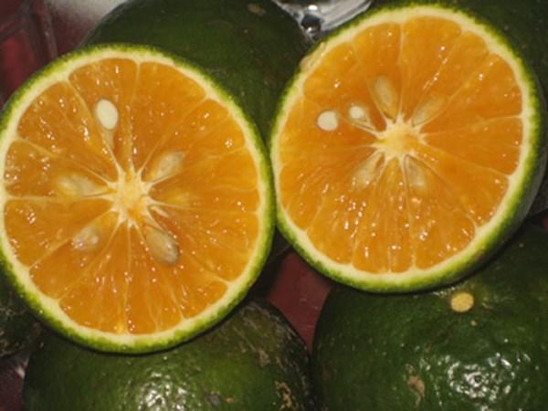 Những loại rau quả tốt hơn nước tăng lực, mọi nam giới nhất định nên ăn - Ảnh 4.