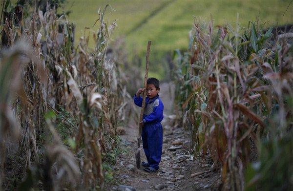 Hình ảnh hiếm về tuổi thơ của trẻ em Triều Tiên - Ảnh 1.
