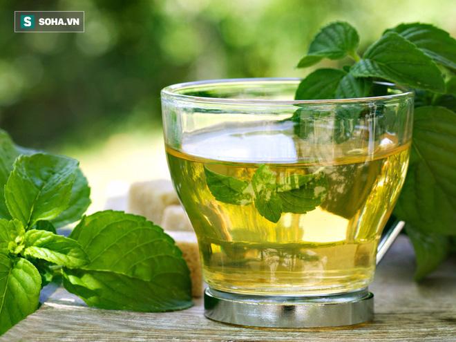 Gan là cơ quan lọc chất độc nhưng cũng có khi quá tải: 6 món trà giải độc gan cần biết ngay - Ảnh 1.