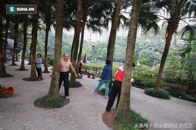 Chữa bệnh bằng cây xanh: Một trào lưu dưỡng sinh mới đang nở rộ ở Trung Quốc - Ảnh 1.