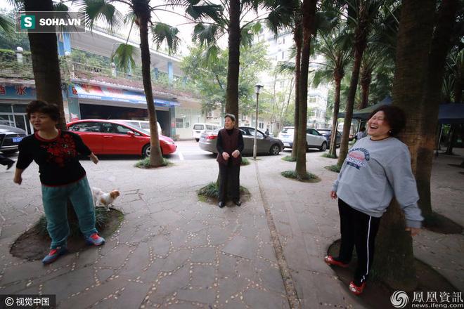 Chữa bệnh bằng cây xanh: Một trào lưu dưỡng sinh mới đang nở rộ ở Trung Quốc - Ảnh 11.