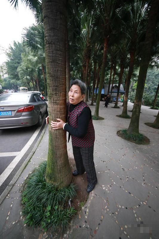 Chữa bệnh bằng cây xanh: Một trào lưu dưỡng sinh mới đang nở rộ ở Trung Quốc - Ảnh 12.
