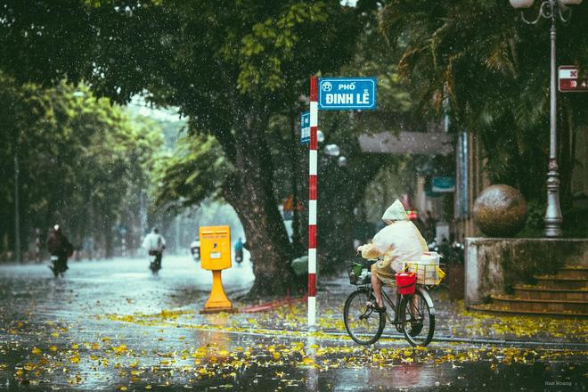 Những bức ảnh tuyệt đẹp này sẽ khiến bạn nhận ra, trong mưa, cuộc đời vẫn dịu dàng đến thế - Ảnh 2.