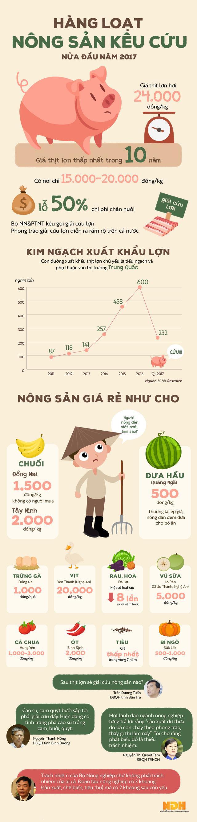 [Infographic] Nông sản đồng loạt kêu cứu nửa đầu năm 2017 - Ảnh 1.