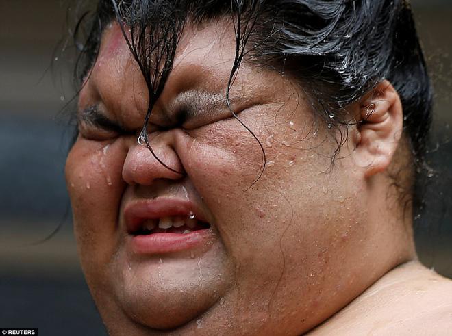 Vén màn cuộc sống của các đấu sĩ sumo tinh nhuệ tại Nhật Bản: Nạp 8.000 calo/ngày, phải thở bằng máy oxy khi ngủ - Ảnh 2.
