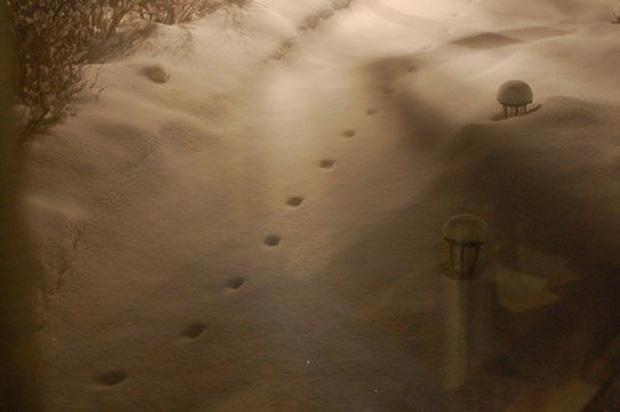 """Câu chuyện bí ẩn về những """"dấu chân ác quỷ"""" thách thức giới khoa học - Ảnh 1."""