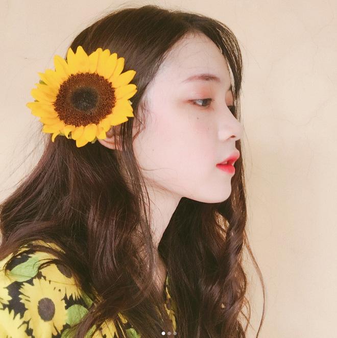 Nữ sinh làm mẫu ảnh hot nhất Nghệ An: 11 năm liền luôn là học sinh giỏi - Ảnh 3.