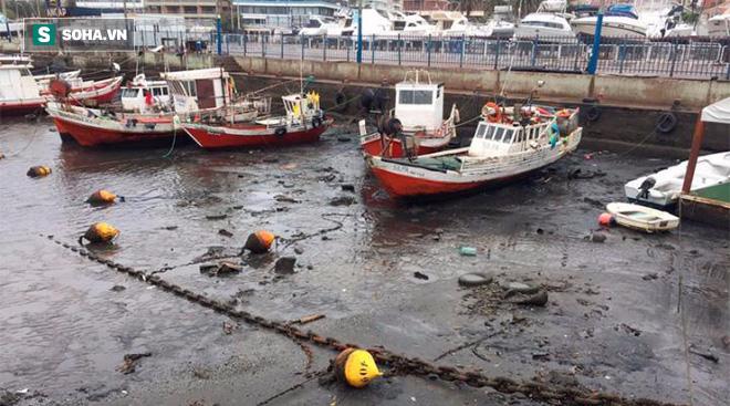 Hé lộ nguyên nhân bí ẩn khiến bãi biển ở Uruguay, Brazil bỗng nhiên cạn ráo - Ảnh 1.