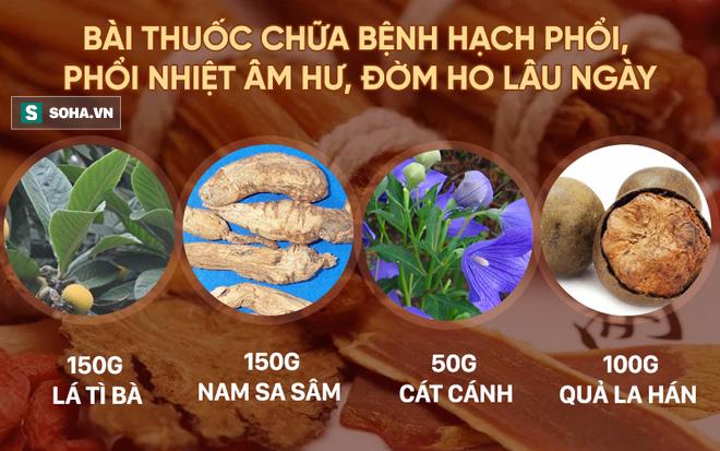 5 bài thuốc chữa bệnh quý nhất từ loại trái cây bình dân có nhiều ở Việt Nam - Ảnh 2.
