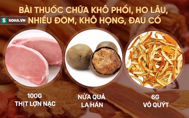 5 bài thuốc chữa bệnh quý nhất từ loại trái cây bình dân có nhiều ở Việt Nam - Ảnh 3.