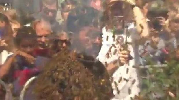 Người đàn ông để cho 100 nghìn con ong bâu kín mặt mà vẫn không sao - Ảnh 3.