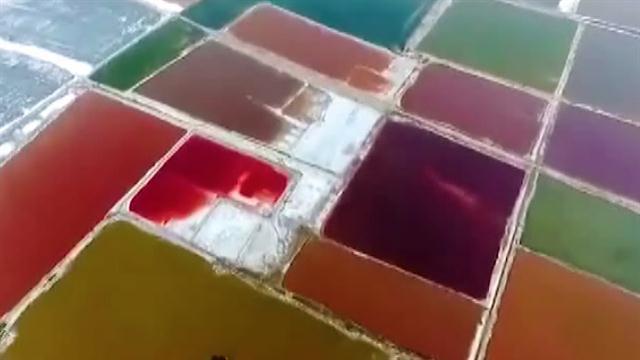 Giải mã nguyên nhân biển chết bỗng hóa màu kỳ dị ở Trung Quốc - Ảnh 2.