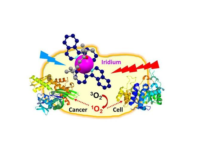 Kim loại đến từ ngoài Trái Đất có thể giúp con người điều trị ung thư - Ảnh 2.