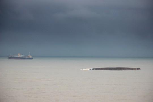 Bình Định yêu cầu khẩn trương trục vớt 9 tàu hàng bị chìm - Ảnh 1.