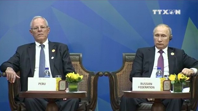 Chủ tịch nước Trần Đại Quang: Đây chính là giai đoạn có ý nghĩa then chốt và quyết định đối với APEC - Ảnh 2.