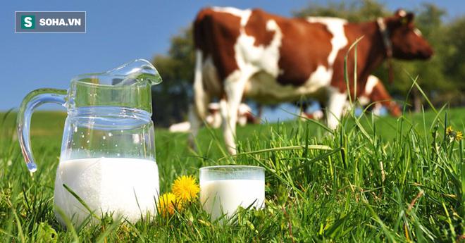 Không chỉ sữa bò, 5 loại sữa sau cũng được người Ấn Độ ưa chuộng vì rất bổ dưỡng - Ảnh 2.