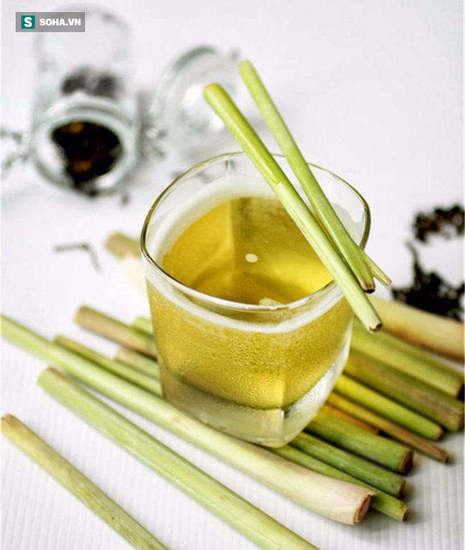 Có một loại cây dân dã ở Việt Nam khi pha thành trà uống rất có lợi cho sức khỏe - Ảnh 3.