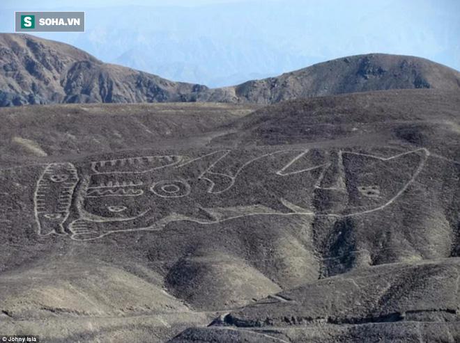 Phát hiện dị thường: Hình vẽ cá voi sát thủ dài 70m giữa sa mạc huyền bí ở Peru - Ảnh 1.