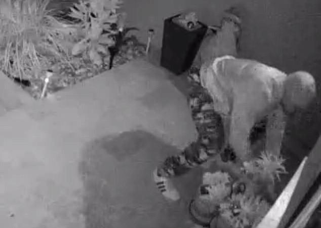 Hàng giao đến nhà chưa kịp nhận đã bị lấy cắp, cô gái tá hỏa phát hiện kẻ trộm lại chính là người này - Ảnh 2.