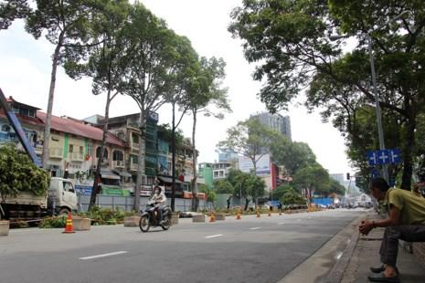 Bắt đầu đốn hạ hàng cây xanh trên đường Lê Lợi - Ảnh 10.
