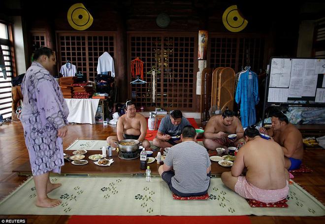 Vén màn cuộc sống của các đấu sĩ sumo tinh nhuệ tại Nhật Bản: Nạp 8.000 calo/ngày, phải thở bằng máy oxy khi ngủ - Ảnh 11.