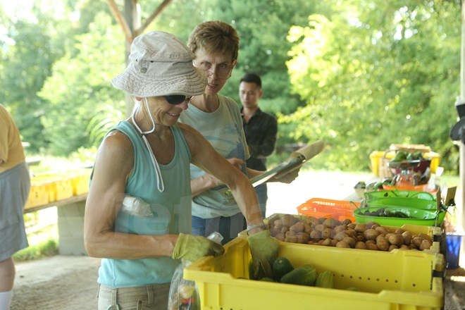 Bài 4: Trang trại cộng đồng giúp người Mỹ giải bài toán thực phẩm sạch - Ảnh 13.
