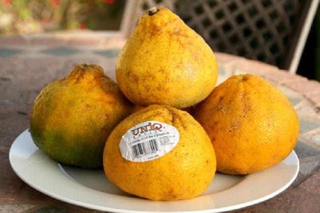 Những loại trái cây bất chấp mọi quy luật để tồn tại với vẻ ngoài vô cùng kỳ dị - Ảnh 12.