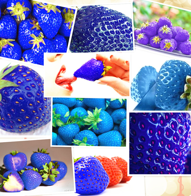 Những loại trái cây bất chấp mọi quy luật để tồn tại với vẻ ngoài vô cùng kỳ dị - Ảnh 15.