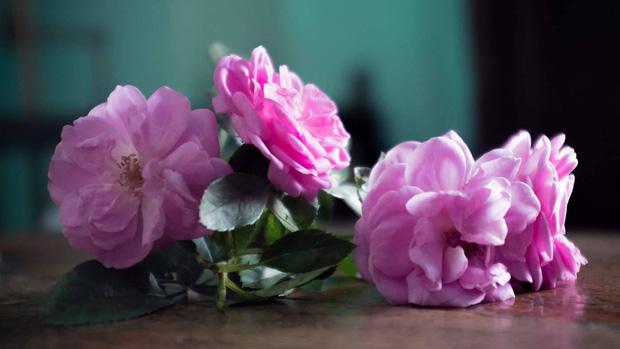 Kinh đô nước hoa của Ấn Độ, nơi cất giữ linh hồn của những mùi hương và cuộc chiến với ngành nước hoa công nghiệp - Ảnh 16.