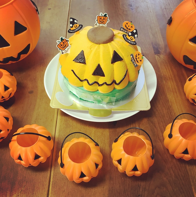 Loạt ảnh hóa trang Halloween hoành tráng nhất mạng xã hội của bé gái Nhật và những người bạn thú cưng - Ảnh 16.