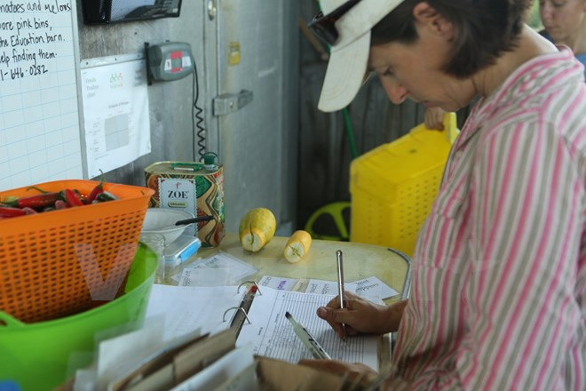Bài 4: Trang trại cộng đồng giúp người Mỹ giải bài toán thực phẩm sạch - Ảnh 18.