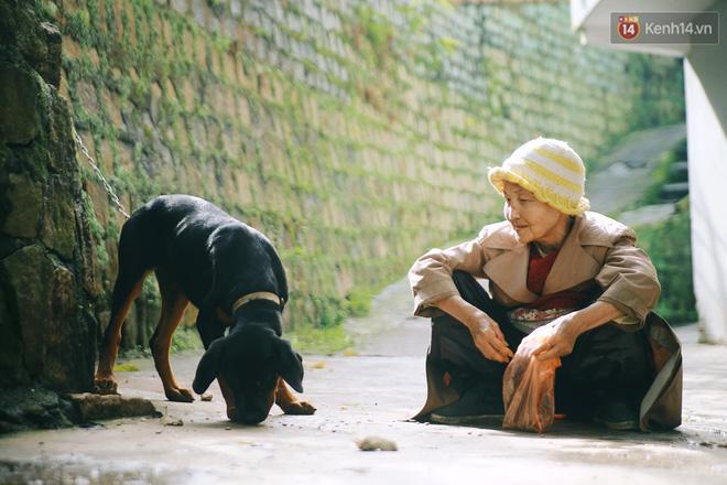 Hồng nhan thời trẻ nhưng về già chẳng chồng con, cụ bà 83 tuổi bầu bạn với thú hoang nơi phố núi Đà Lạt - Ảnh 18.
