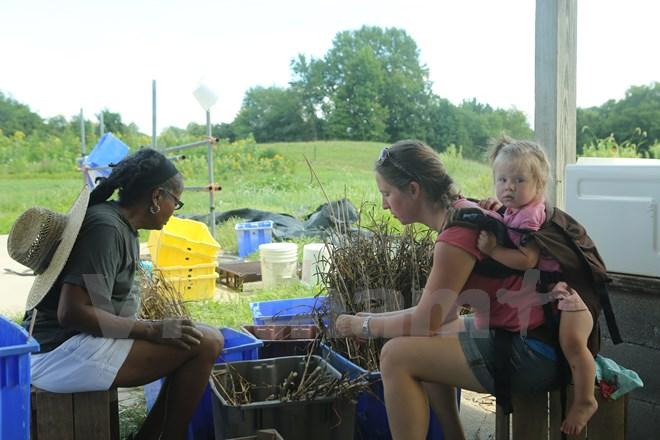Bài 4: Trang trại cộng đồng giúp người Mỹ giải bài toán thực phẩm sạch - Ảnh 19.